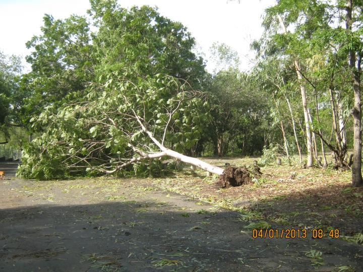 Cyclone Dumile 030