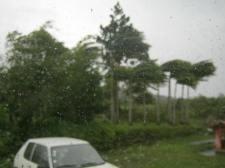Cyclone Dumile 093