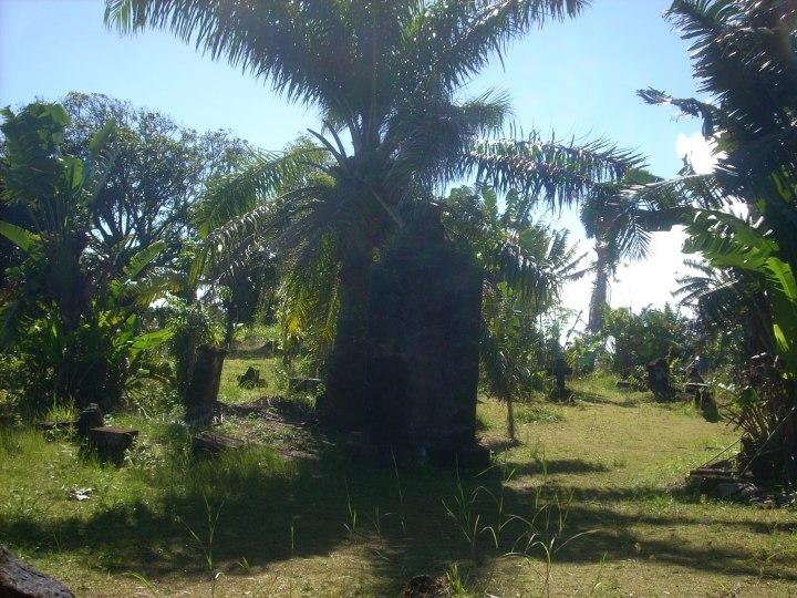 Madagascar 218