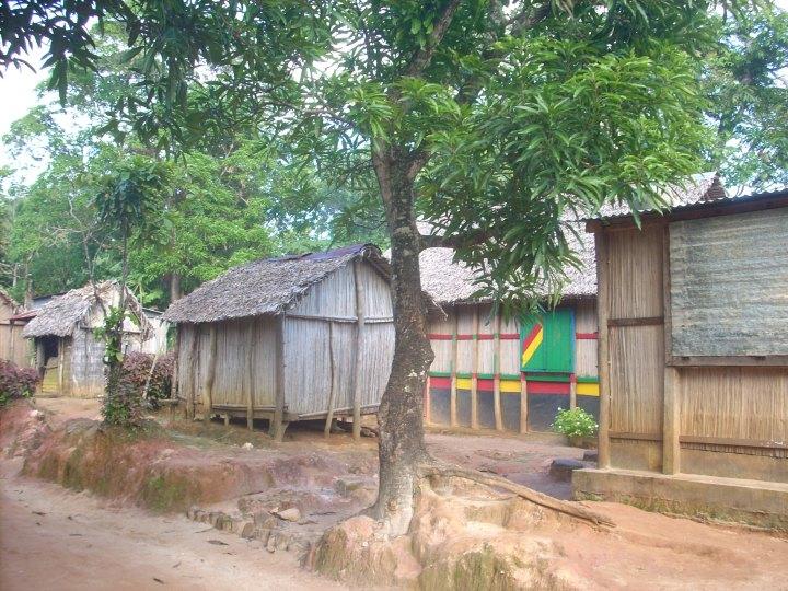 Madagascar 261