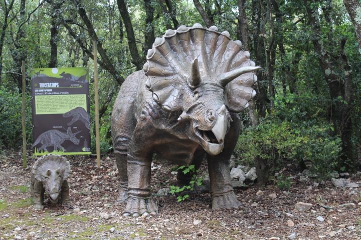 0 28avril - Zoo préhistorique - Aven Marzal (53)