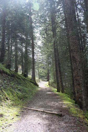 14mai - Lac Fontaine - Vacheresse (10)