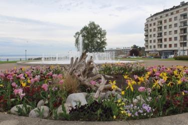 11mai - Thonon les Bains (12)